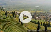 Alto Adige mediterraneo