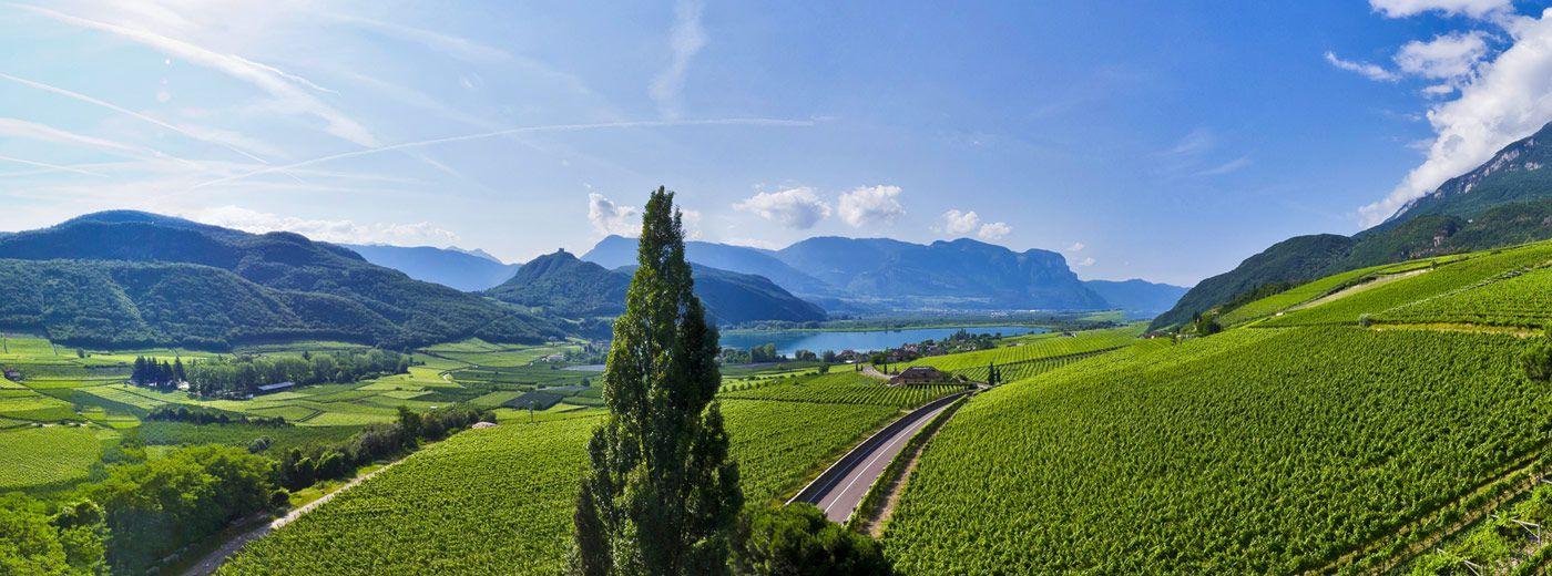 Unterkünfte in Südtirols Süden - Südtirol Hotel